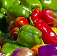 mix of colorful peppers